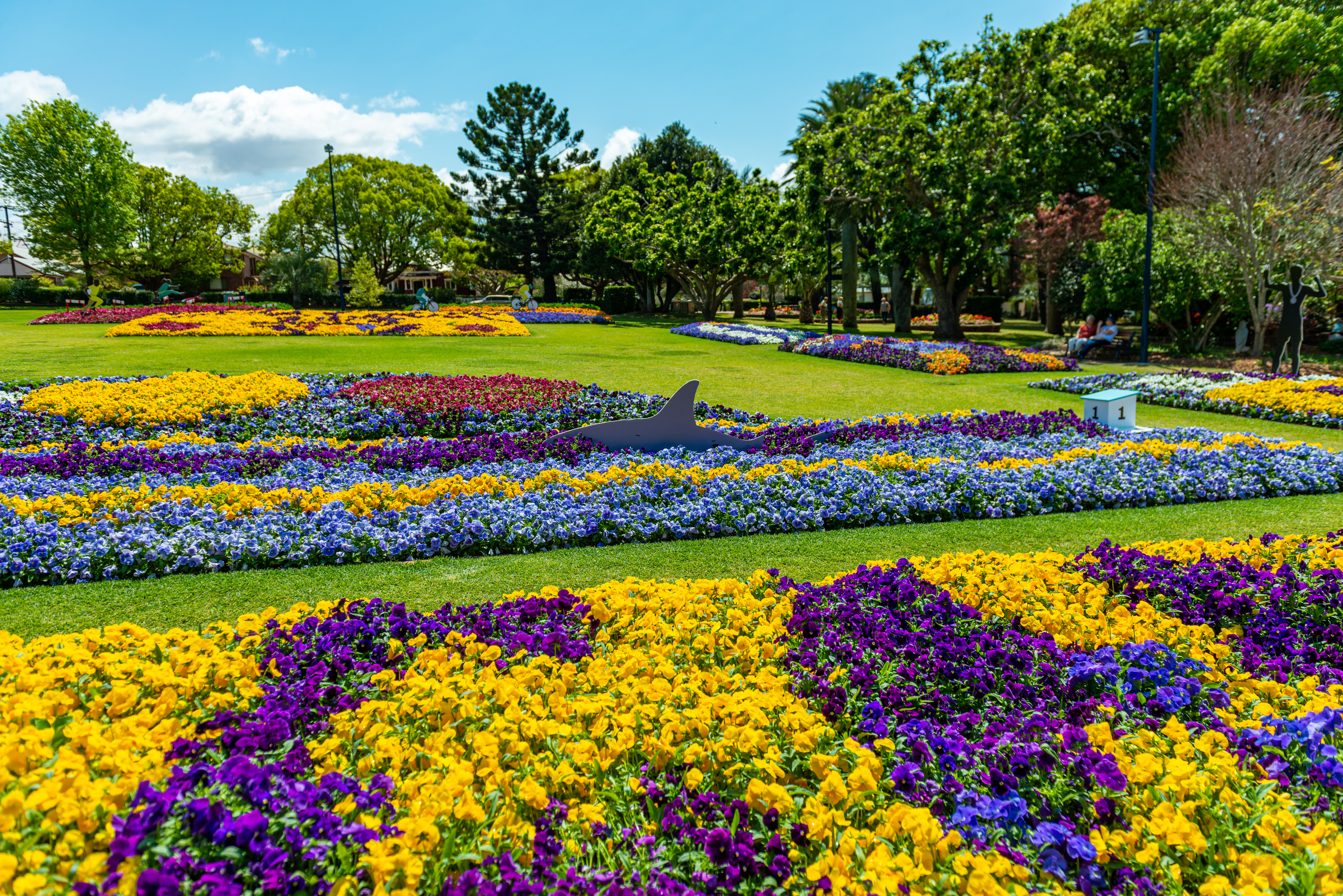 Australia's Best Flower Festivals